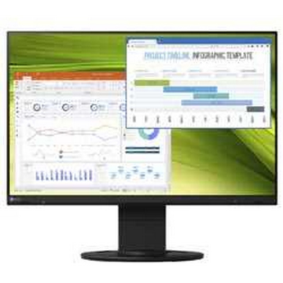 Eizo Monitor Flexscan...